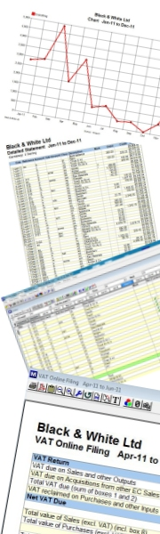bookkeeping software forms