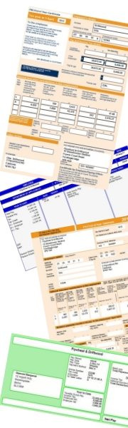payroll software forms